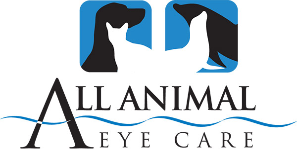 All Animal Eye Care Ophthalmology Services