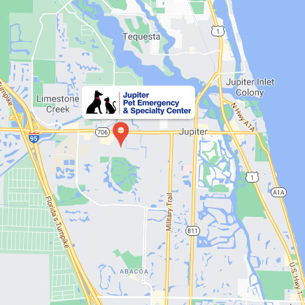 Jupiter Pet Emergency and Specialty Center on Google Maps